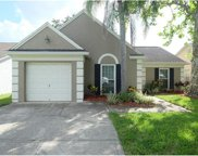 9729 Fox Hollow Road, Tampa image