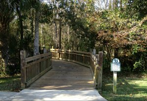 Bridge Trail through the woods from Roseville Corner and into Artisan Park