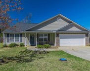236 Crescent Creek Court, Greenville image