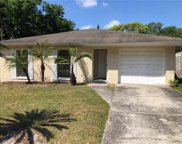 9610 N Connechusett Road, Tampa image