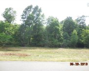 229 Patterson Dr, Columbia image