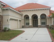 8309 Windsor Bluff Drive, Tampa image