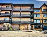 450 N Main Street Unit #S201A, Wauconda image