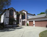 13002 Gleneagles Place, Riverview image