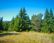 41 Acres Titlow Hill Road, Berry Summit image