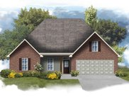 38495 Camellia Cove Rd, Gonzales image