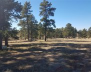 10560 Shadow Pines Road, Parker image