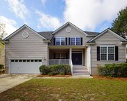 1293 Wisteria Wall Drive, Mount Pleasant image
