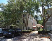 1341 Crab Orchard Drive Unit #204, Raleigh image