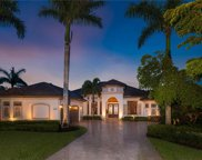 29011 Amarone Ct, Naples image
