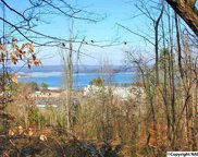 1689 Wyeth Mountain Road, Guntersville image