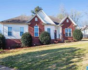 20 Mimosa Ct, Odenville image