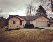 628 Broadview Dr, Sevierville image