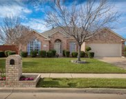 1121 Nickerson Lane, Plano image