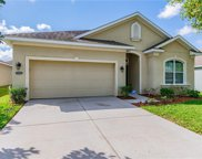 30610 Casewell Place, Wesley Chapel image