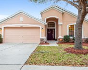10212 Tapestry Key Court, Riverview image