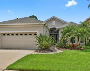 9603 Greenpointe Drive, Tampa image