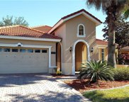 11235 Rapallo Lane, Windermere image