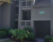 1002 Indian Wells Court Unit 1002, Murrells Inlet image