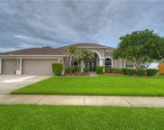 2843 Mossy Timber Trail, Valrico image