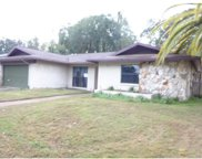 4226 Summerdale Drive, Tampa image