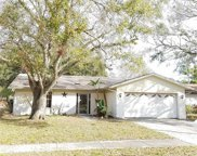 1906 Radcliffe Drive N, Clearwater image