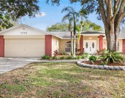 3742 Forest Park Place, Land O' Lakes image