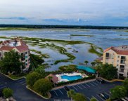 2 Shelter Cove  Lane Unit 203, Hilton Head Island image