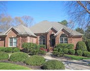 113 Hunters Run, Greenville image