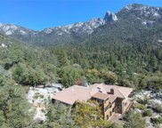 55001 Forest Haven Drive, Idyllwild image