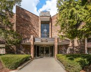 3110 Pheasant Creek Drive Unit 301, Northbrook image