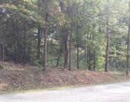 121 Timberlake Drive, Greenback image