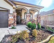 717 Blue Agave Ln, Georgetown image