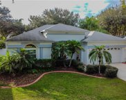 2006 Otter Way, Palm Harbor image