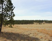 TBD Stagecoach Springs Road, Custer image