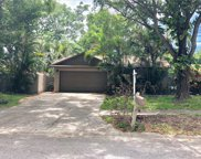 660 Channing Drive, Palm Harbor image