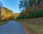 90 Woodland Aster  Way Unit #68, Asheville image