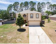 15751 Switch Cane Street, Clermont image