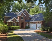 29 New Rhododendron, Chapel Hill image