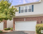 339 Grape Vine Trail, Oswego image