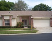 9023 Cotswald Way Unit 9023, New Port Richey image