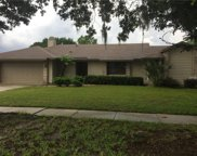 9134 Sabal Palm Circle, Windermere image