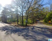 Roberts Mill Pond Rd Unit 1.39, Pell City image
