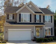 3780  Leela Palace Way, Fort Mill image
