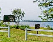 235 White Oak Bluff Road, Stella image