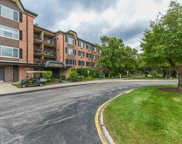 1117 South Old Wilke Road Unit 406, Arlington Heights image