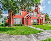 10576 Windsor Lake Court Unit 10576, Tampa image