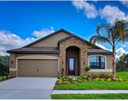 11859 Thicket Wood Drive, Riverview image