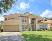 11326 Ledgement Lane, Windermere image