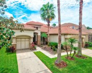 11620 Bristol Chase Drive, Tampa image